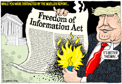 Trashing the Freedom of Information Act by Wolverton