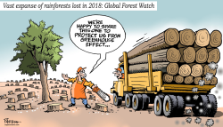Loss of Rainforests by Paresh Nath