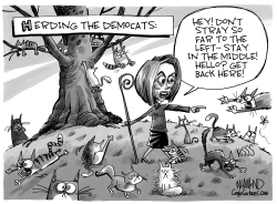 Herding the Democats by Dave Whamond