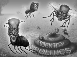 Flies Democrats by Sean Delonas