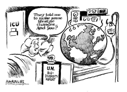 UN Report on Biodiversity by Jimmy Margulies
