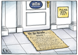 Constitutional Doormat by Christopher Weyant