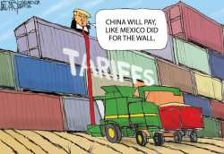 Trump Tariffs by Jeff Darcy