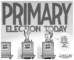Primary elections by John Cole