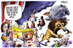 The Circus by Dave Whamond