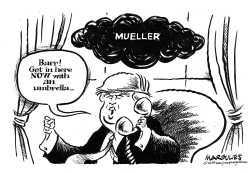 Mueller and TRump by Jimmy Margulies