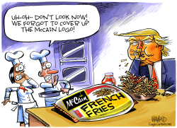 McCain Cover Up by Dave Whamond
