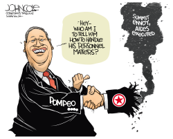 Pompeo and North Korea by John Cole