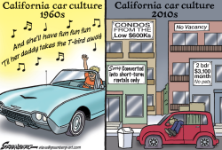 Car Culture by Steve Greenberg