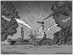 Trump Tariffs by Bob Englehart