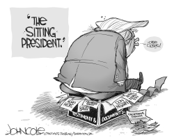 The Sitting President by John Cole