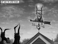 Biden Weather Vane by Sean Delonas