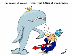 Prince of Whales by Stephane Peray