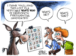 Democrat Who's Who by Dave Whamond