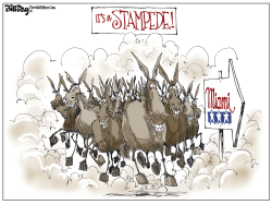 Miami Donkey Stampede by Bill Day