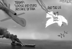 Iran Trump Airstrikes by Jeff Darcy