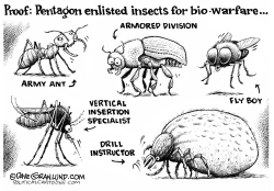 Pentagon and insect warfare by Dave Granlund