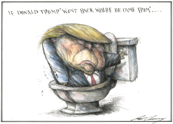 Trump In The Toilet by Dale Cummings