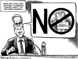 Mueller Before Congress by Kevin Siers