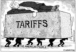 Tariffs on the Backs of Americans by Wolverton