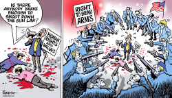 American gun law by Paresh Nath