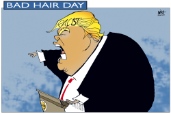 BAD HAIR DAY FOR TRUMP by Randy Bish