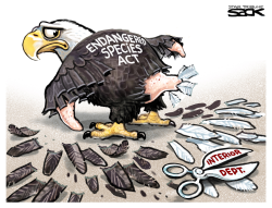 Endangered Species by Steve Sack