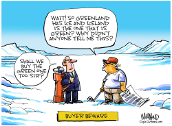 Trump Greenland Purchase by Dave Whamond