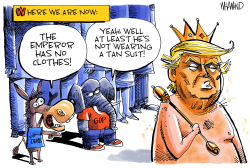 Emperor's Clothes by Dave Whamond