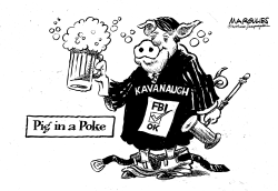 Pig in a Poke by Jimmy Margulies