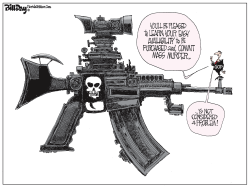 Assault Weapon Wins by Bill Day