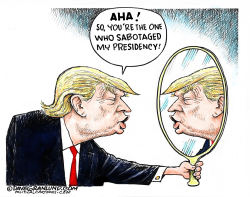 Sabotaging Trump presidency by Dave Granlund