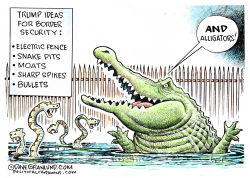 Border security and alligators by Dave Granlund