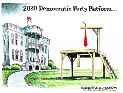 2020 Democratic Party Platform by Dave Granlund