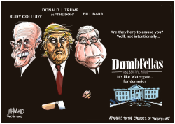 Dumb Fellas: Watergate the sequel by Dave Whamond