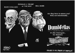Dumb Fellas Watergate the sequel by Dave Whamond