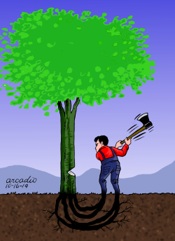 Self destruction by Arcadio Esquivel