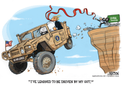 President Trump Driven By His Gut by RJ Matson