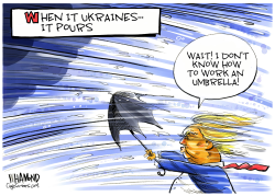 When it Ukraines it pours by Dave Whamond