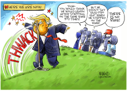 Trump VS the rake by Dave Whamond