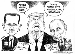 Trump and Special Ops raid by Dave Granlund
