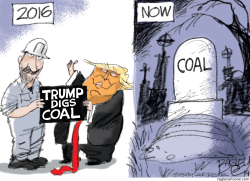 Trump Digs Coal by Pat Bagley