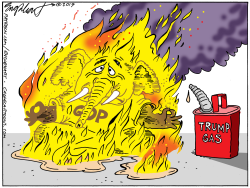 Self Immolation by Bob Englehart