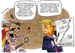 Trump's Sharpie Polls by Dave Whamond
