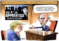 The Apprentice White House by Dave Whamond