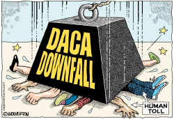 DACA Downfall by Wolverton