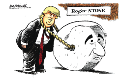 Roger Stone guility by Jimmy Margulies