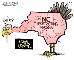 LOCAL NC Redistricting turkey by John Cole