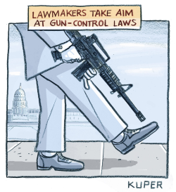 Gun Laws by Peter Kuper