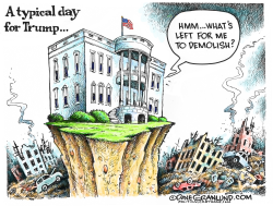 Trump daily demolition by Dave Granlund